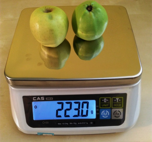 Gastro váha CAS SW-2 do 15 kg s akumulátorom
