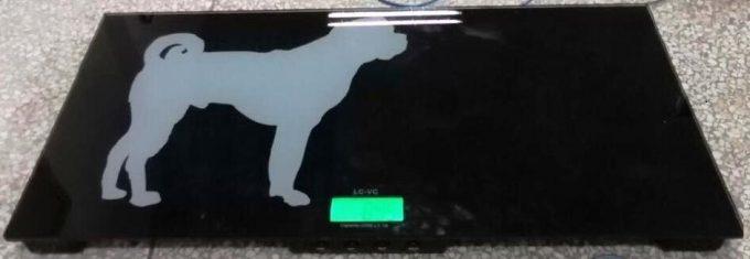 Veterinárna váha LC- VC do 150 kg