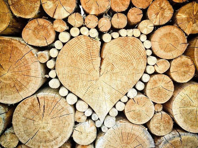 Sušenie dreva