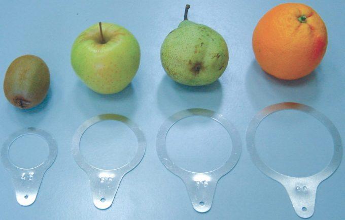 Šablóny na meranie veľkosti ovocia