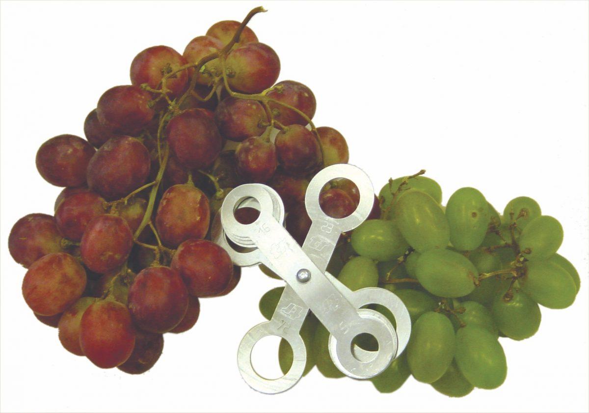 Šablóny na ovocie a zeleninu